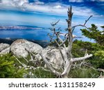 northern velebit national park... | Shutterstock . vector #1131158249