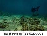 a scuba diver in the aegean sea ... | Shutterstock . vector #1131209201