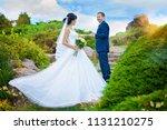 groom leads bride's hand up... | Shutterstock . vector #1131210275