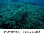 a ladder to nowhere on the... | Shutterstock . vector #1131216365