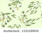 elegant eucalyptus seamless... | Shutterstock .eps vector #1131230024