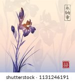 iris flower and sunrise.... | Shutterstock .eps vector #1131246191