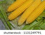 fresh corn on cobs on rustic... | Shutterstock . vector #1131249791