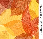 Dry Autumn Leaves Template. Eps ...