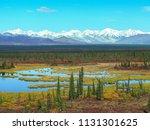 susitna river bridge along the... | Shutterstock . vector #1131301625