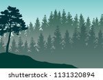 vector landscape with detailed... | Shutterstock .eps vector #1131320894