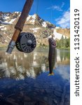 fly fishing for trout in an... | Shutterstock . vector #1131420119