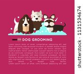 banner with grooming dogs  ... | Shutterstock .eps vector #1131534674