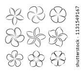plumeria flower icon  vector | Shutterstock .eps vector #1131549167
