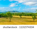 countryside of mallorca  | Shutterstock . vector #1131574334