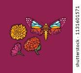 butterflies moths and flowers... | Shutterstock .eps vector #1131601571