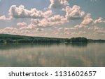 vegetation at the river danube. ... | Shutterstock . vector #1131602657