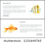 butterfly and gold fish with... | Shutterstock .eps vector #1131644765