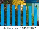 blue rustic wooden fence.... | Shutterstock . vector #1131675077