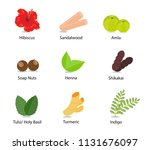 a collection of indian herbs... | Shutterstock .eps vector #1131676097