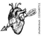 Human Heart Pierced With An...