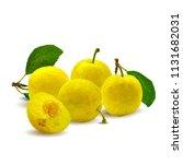 fresh  nutritious  tasty yellow ... | Shutterstock .eps vector #1131682031