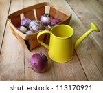 Hyacinth bulbs in a basket and yellow watering-can on a wooden table - stock photo