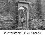 list of thai literature it is...   Shutterstock . vector #1131712664