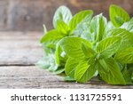 mint fresh with dew drops on... | Shutterstock . vector #1131725591