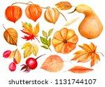 watercolor illustration  hand... | Shutterstock . vector #1131744107