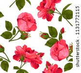 vector botanical seamless...   Shutterstock .eps vector #1131772115