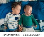 two little baby brothers... | Shutterstock . vector #1131890684