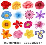 A Set Of Beautiful Flowers...
