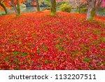 sakyoku ku  kyoto city in late... | Shutterstock . vector #1132207511