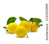fresh  nutritious  tasty yellow ... | Shutterstock .eps vector #1132325009