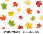 autumn composition. pattern... | Shutterstock . vector #1132332431