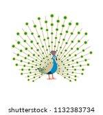 beautiful peacock cartoon flat...   Shutterstock .eps vector #1132383734