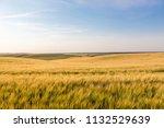 green field and beautiful sunset | Shutterstock . vector #1132529639