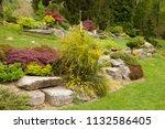 flowering rock garden in spring....   Shutterstock . vector #1132586405