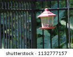 lantern style bird feeder in... | Shutterstock . vector #1132777157