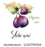 stylized watercolor figs...   Shutterstock . vector #1132790534