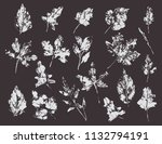 set with stamp leaves. vector...   Shutterstock .eps vector #1132794191