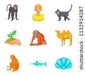 vital world icons set. cartoon... | Shutterstock . vector #1132914287
