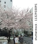 apr 3  2015  tokyo japan  pink...   Shutterstock . vector #1132933091