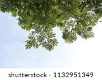 close up background low view... | Shutterstock . vector #1132951349