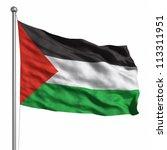 flag of palestine. rendered... | Shutterstock . vector #113311951