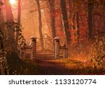 a gothic gate blocking a foot... | Shutterstock . vector #1133120774