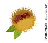 chestnut hedgehog with leaves | Shutterstock .eps vector #1133133134