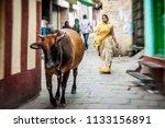 varanasi   november 22 ... | Shutterstock . vector #1133156891