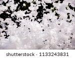 white soap foam on a black...   Shutterstock . vector #1133243831