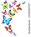 beautiful color butterflies set ...   Shutterstock . vector #1133353727