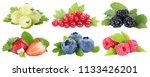 collection of berries... | Shutterstock . vector #1133426201