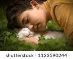 teenager boy with cat kiss hug... | Shutterstock . vector #1133590244
