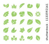 leaf flat vector icons   | Shutterstock .eps vector #1133592161
