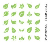 leaf flat icons   | Shutterstock .eps vector #1133592167